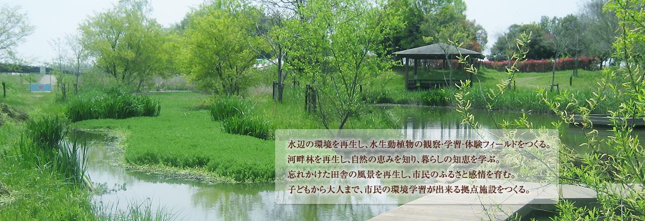 水辺の環境を再生し、水生動植物の観察・学習・体験フィールドをつくる。河畔林を再生し、自然の恵みを知り、暮らしの知恵を学ぶ。忘れかけた田舎の風景を再生し、市民のふるさと感情を育む。子どもから大人まで、市民の環境学習が出来る拠点施設をつくる。